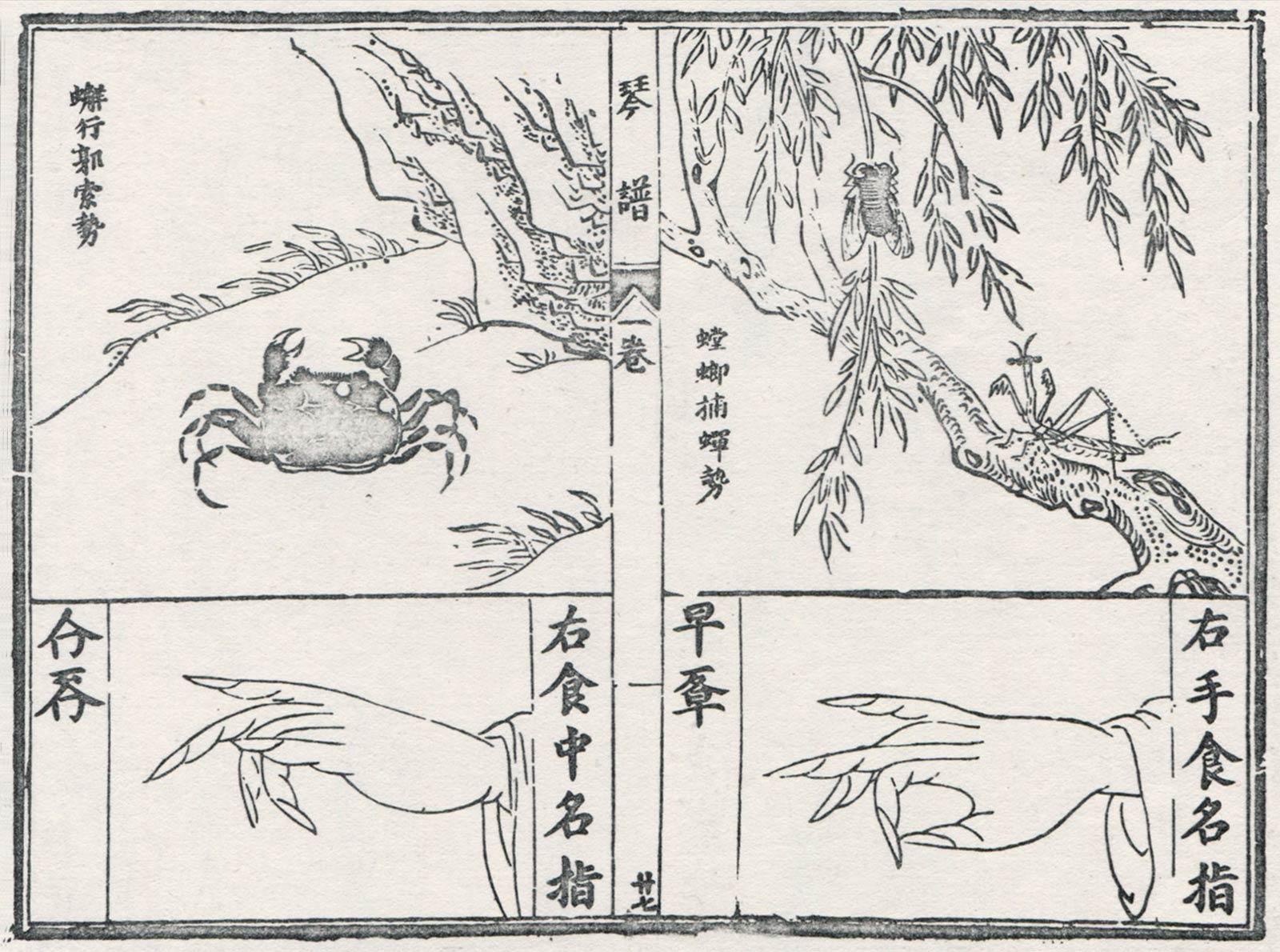Explication imagée des doigtés: le crabe